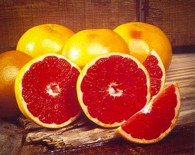 Rio Red Grapefruit Trees For Sale Online | The Tree Center