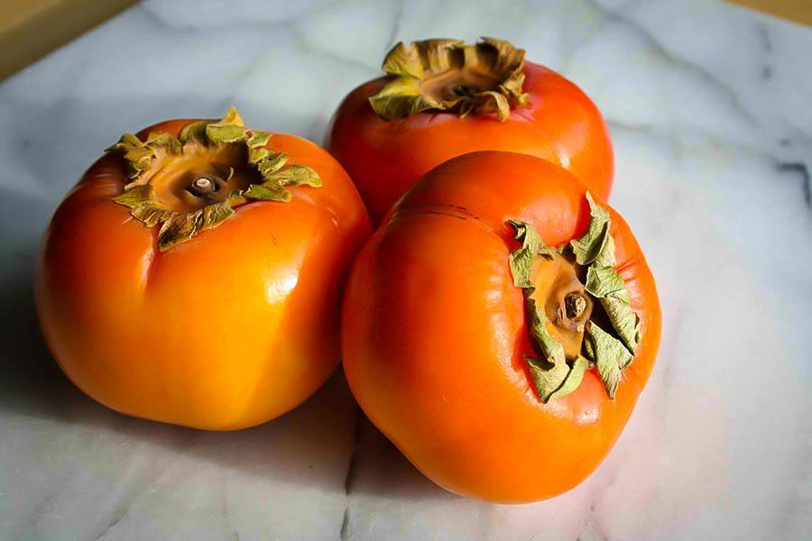 Persimmon Tree Fruit