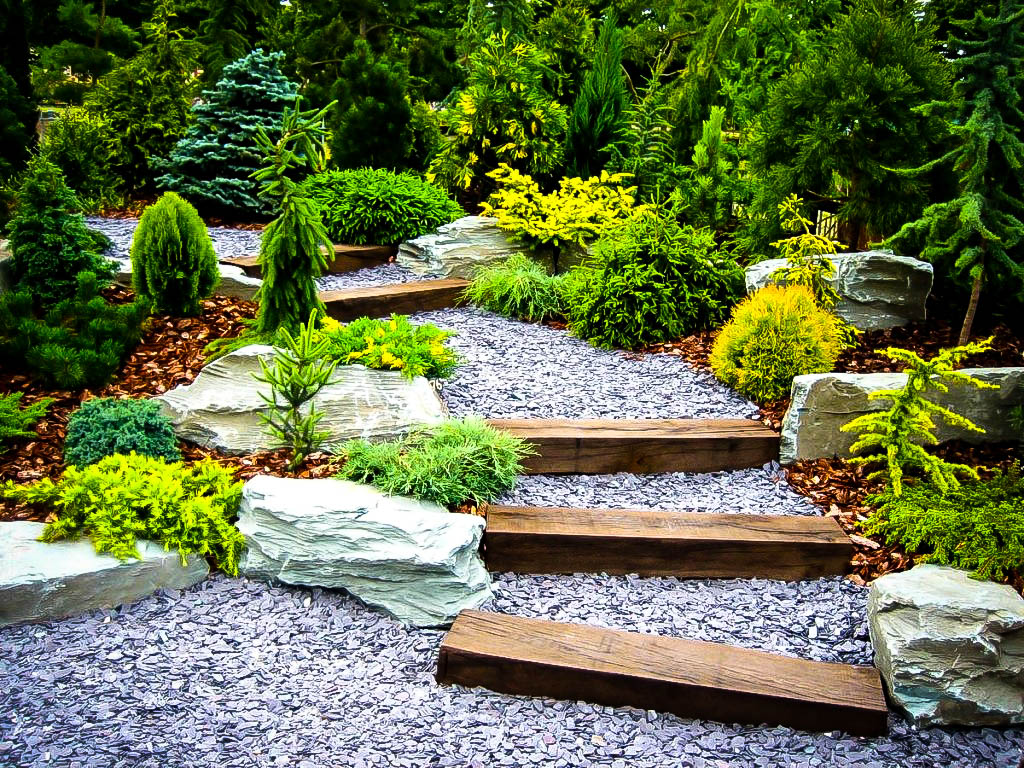 plants for a japanese garden - Japanese Garden
