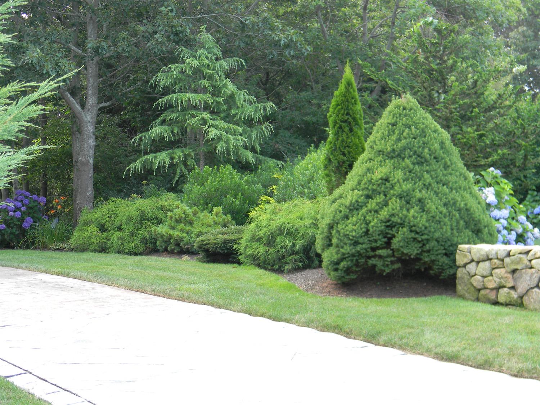 Attractive The Paradise Garden