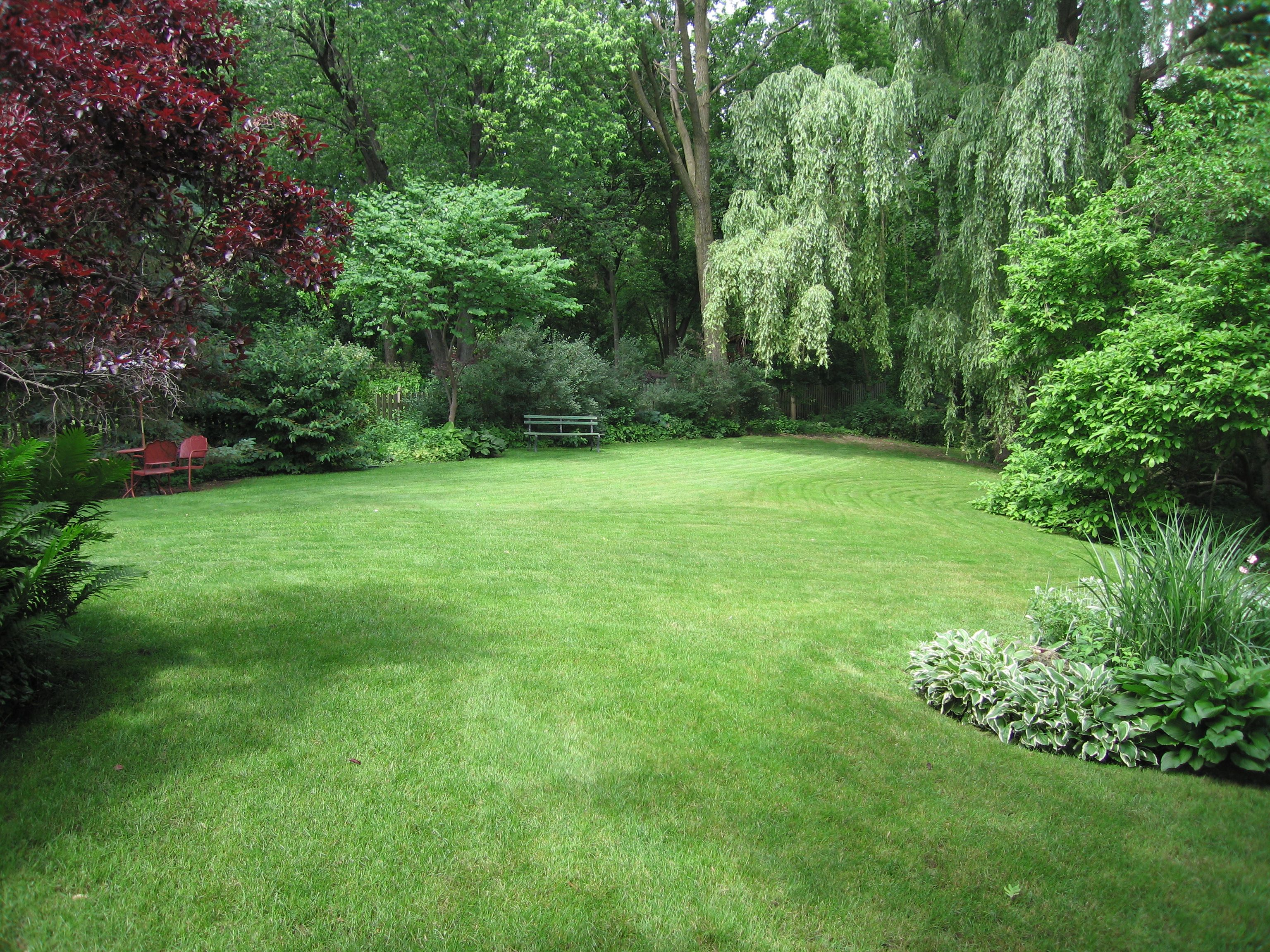 5 steps to know your garden better the tree center for Large garden ideas