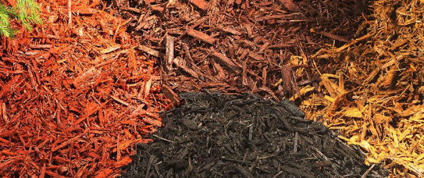 Get the Most from Your Mulch