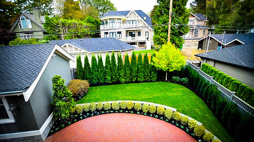 Privacy Tree Fence
