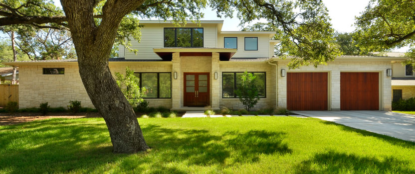 How to Choose a Shade Tree