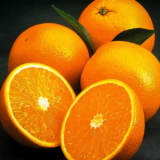 Olinda Valencia Orange Trees For Sale   The Tree Center™