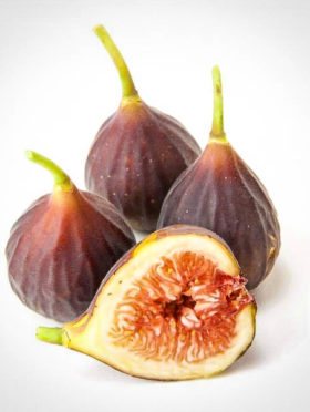 Chicago Hardy Fig