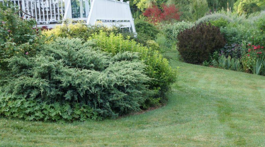 Design Your Garden – Part 3