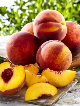 Hale Haven Peach Tree For Sale Online The Tree Center