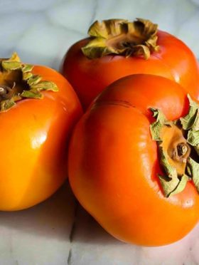 Persimmon Tree Fruit