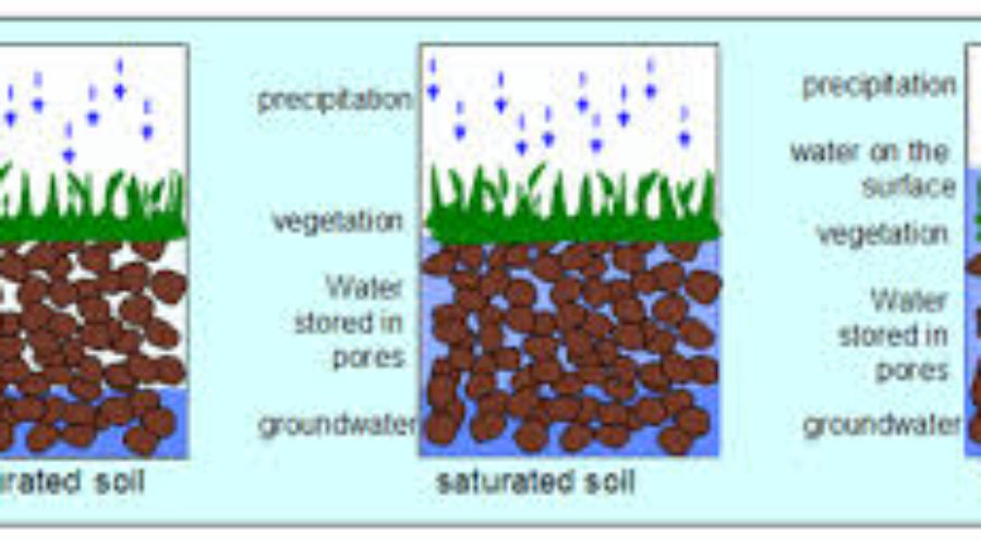 What is 'Well-Drained Soil'?