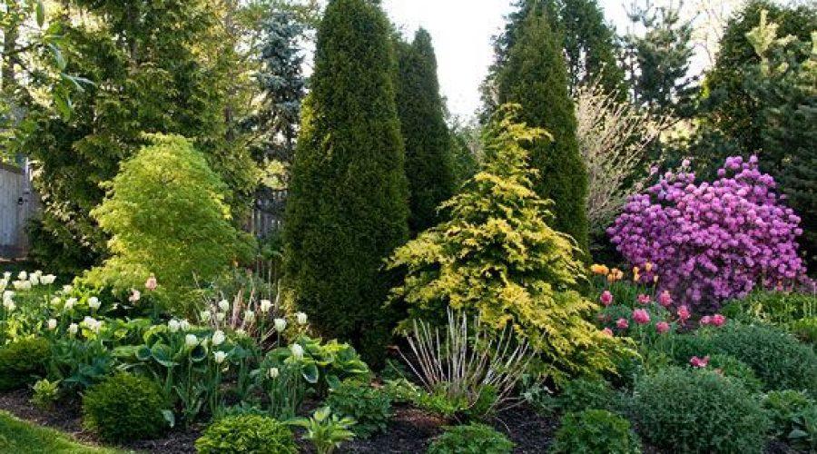 Kick Start Your Garden this Spring