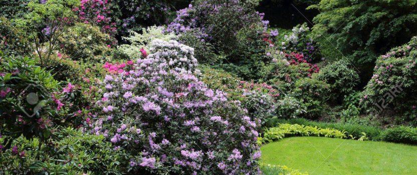 Design Your Garden – Part 2