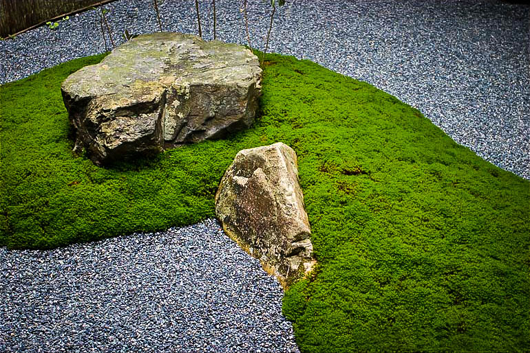 Japanese Garden Stones Plants for a japanese garden the tree center japanese garden frm the moss workwithnaturefo